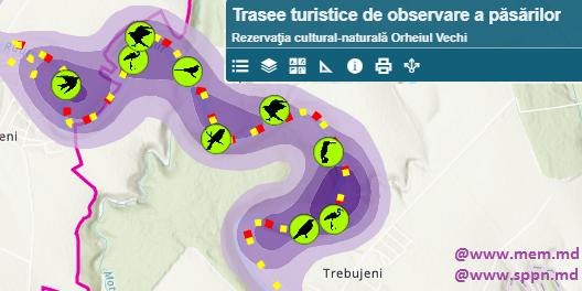 Trasee turistice de observare a păsărilor în Rezervaţia cultural-naturală Orheiul Vechi