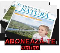 Abonare_Online
