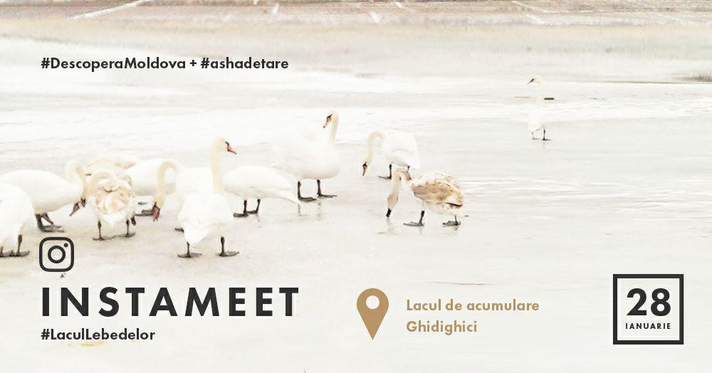 Instagramerii își dau întâlnire pe Lacul Ghidighici