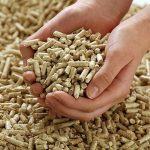 Cursuri gratuite pentru operatoriii centralelor termice pe biomasă
