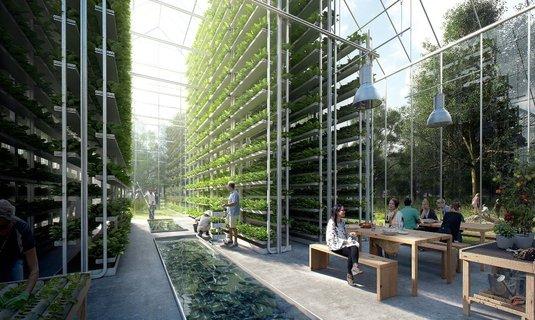 Comunități ecologice, un proiect unic va demara în Olanda