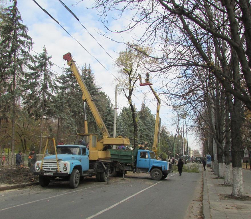 Spaţiile verzi ale oraşului Chişinău degradează continuu
