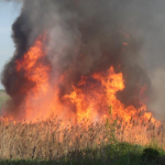 Incendiu de vegetație în fiecare al cincilea raion