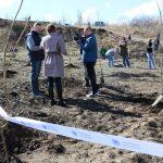La Tohatin sute de voluntari au participat la acțiunea Plantăm fapte bune în Moldova
