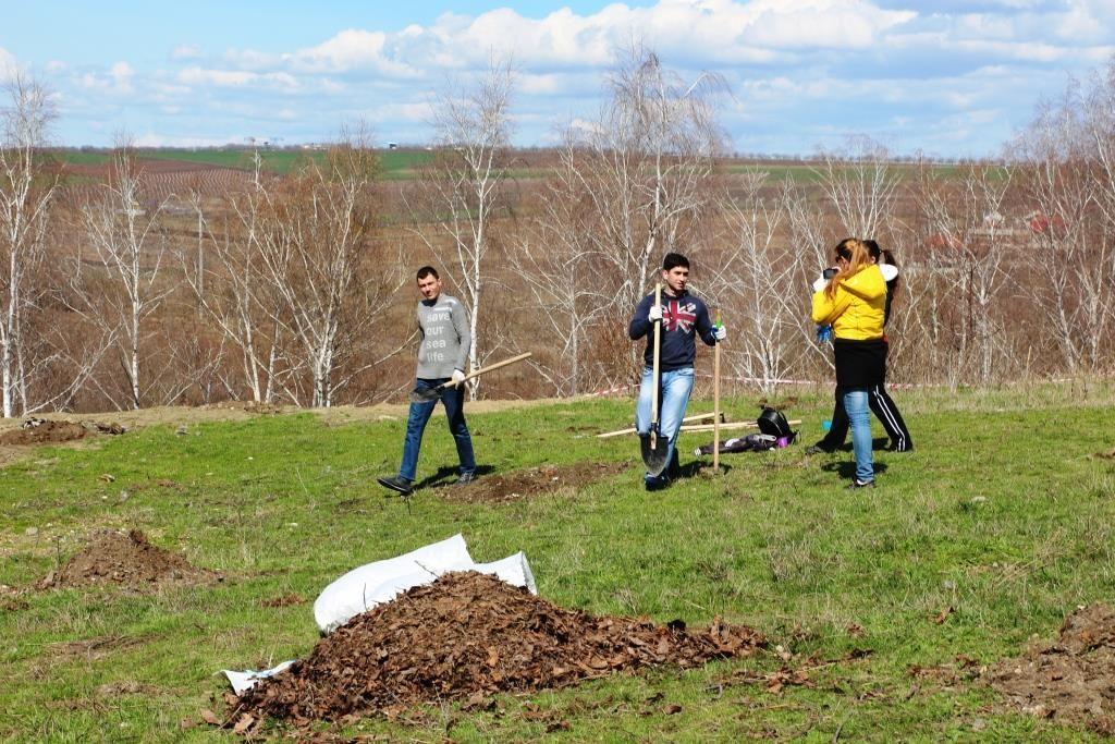 Plantăm Fapte bune în Moldova - Tohatin, 25 martie 2017. Foto: Ecopresa.md