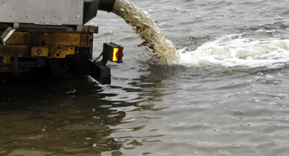 Tone de pește au fost eliberate în Nistru