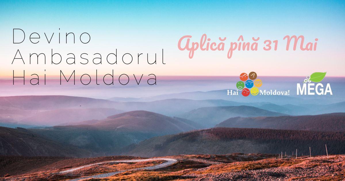 Hai Moldova te invită la Școala de Vară! Ai 5 motive sa aplici