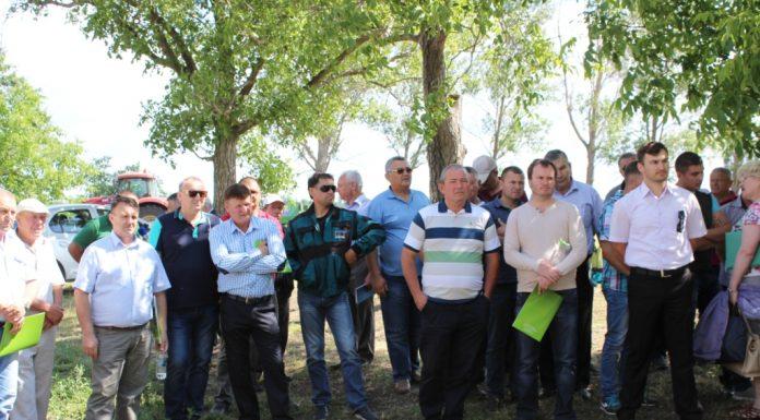 Proiectul MAC-P. Ziua Câmpului, 15 iunie 2017, gospodăria lui Nicolai Kiktenko de la Rediul de Sus, Fălești