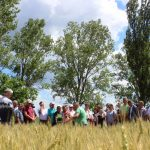(foto) La Rediul de Sus, 65 de agricultori au apreciat sistemul conservativ de agricultură
