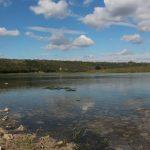 În R. Moldova va fi elaborat un studiu privind impactul hidrocentralelor de pe Nistru
