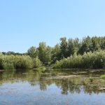 Pericol de inundații de-a lungului râului Prut