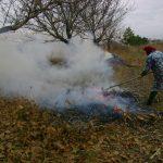 Amenzi pentru cei care ard frunzele