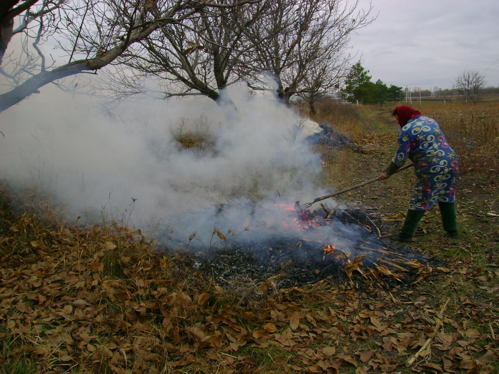 Amenzi de mii de lei. IPM lansează o campanie pentru a diminua poluarea aerului prin arderea frunzelor