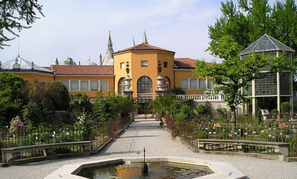 Grădina botanică universitară din Padova, Italia