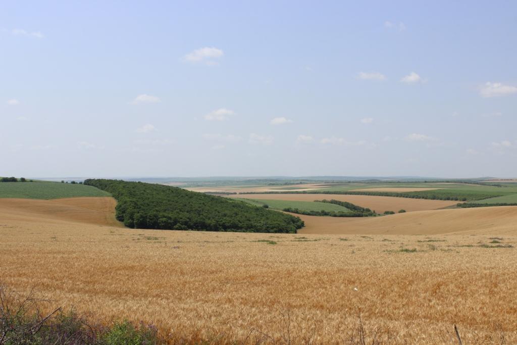 Peisajele Moldovei au nevoie de conservare și protecție