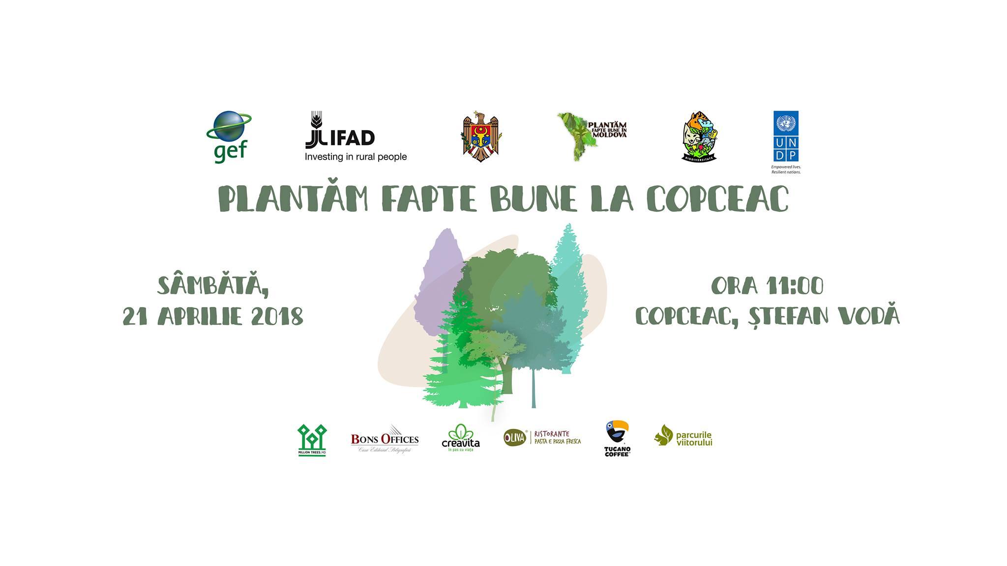Invitație de a planta o pădure