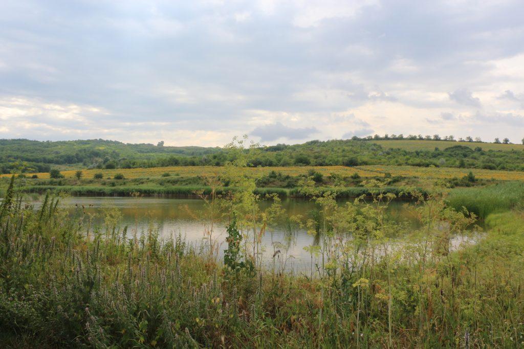 Peisaj mirific la Popeasca, Ștefan Vodă - în apropiere de pepenieră