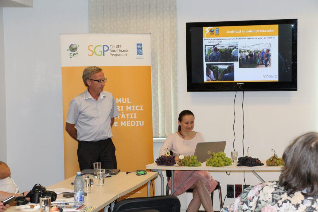 Prezentarea activităţilor realizate de AO Consult Service - în serele demonstrative au fost crescuţi struguri ecologici