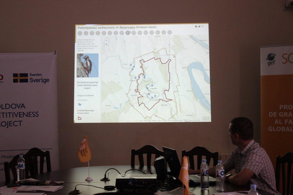 Prezentarea traseului de observare a păsărilor la Orheiul Vechi