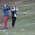 Observarea păsărilor: 10 sfaturi pentru începători