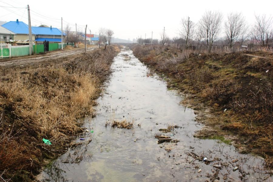 Râul Cogâlnic, afluentul Răutului, prin satul Logănești, Hâncești. Foto: arhiva revistei NATURA, www.natura.md