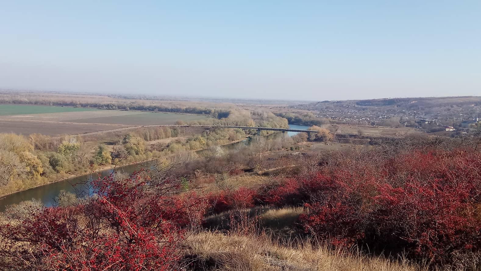 """Plantări în Zona Umedă Ramsar """"Nistrul de Jos"""""""