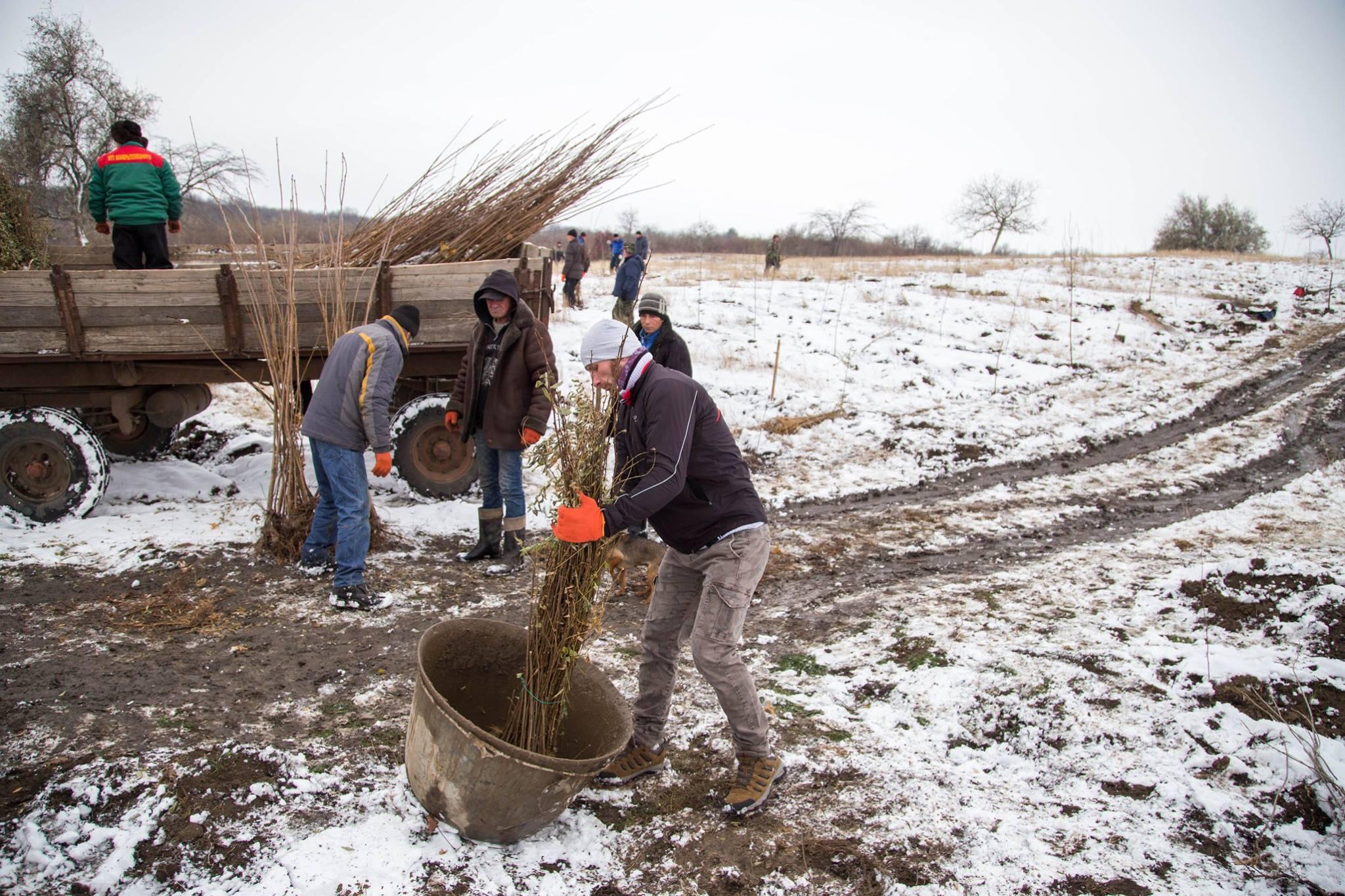 17 noiembrie 2018, satul Popeasca, raionul Ștefan Vodă: plantare pe terenurile degradate