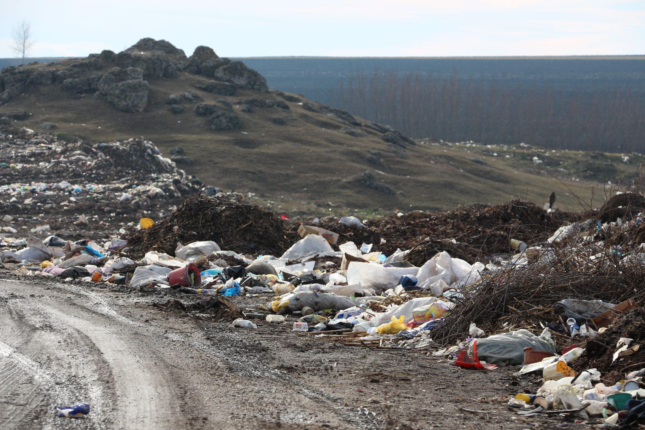De la mii la zeci de mii de lei. MADRM propune majorarea amenzilor pentru încălcarea legislației de protecție a mediului