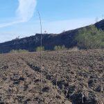 Mișcarea Ecologistă din Moldova a plantat o viitoare pădure pe malul râului Răut