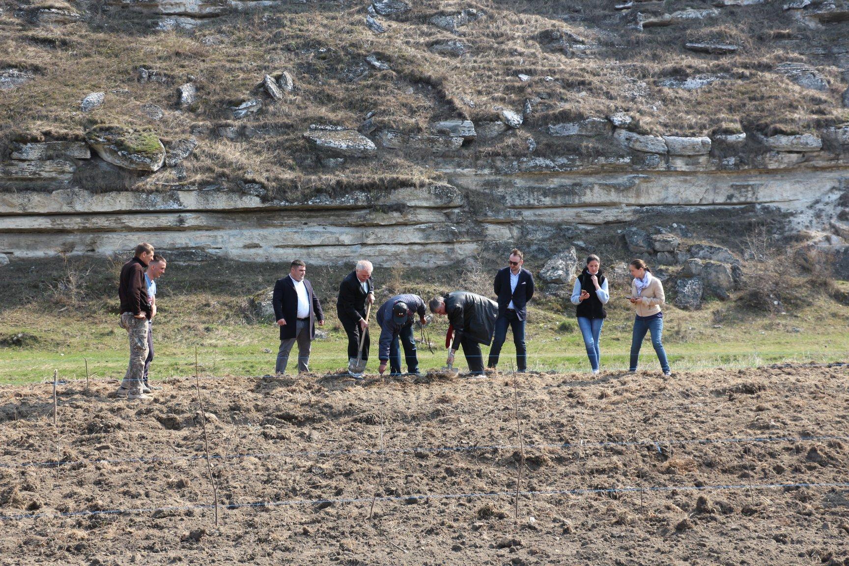 O fâșie riverană de protecție a fost plantată la Orheiul Vechi