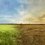 """Schimbări climatice – Personalităţi din întreaga lume, unite în proiectul """"Numărătoare inversă"""""""