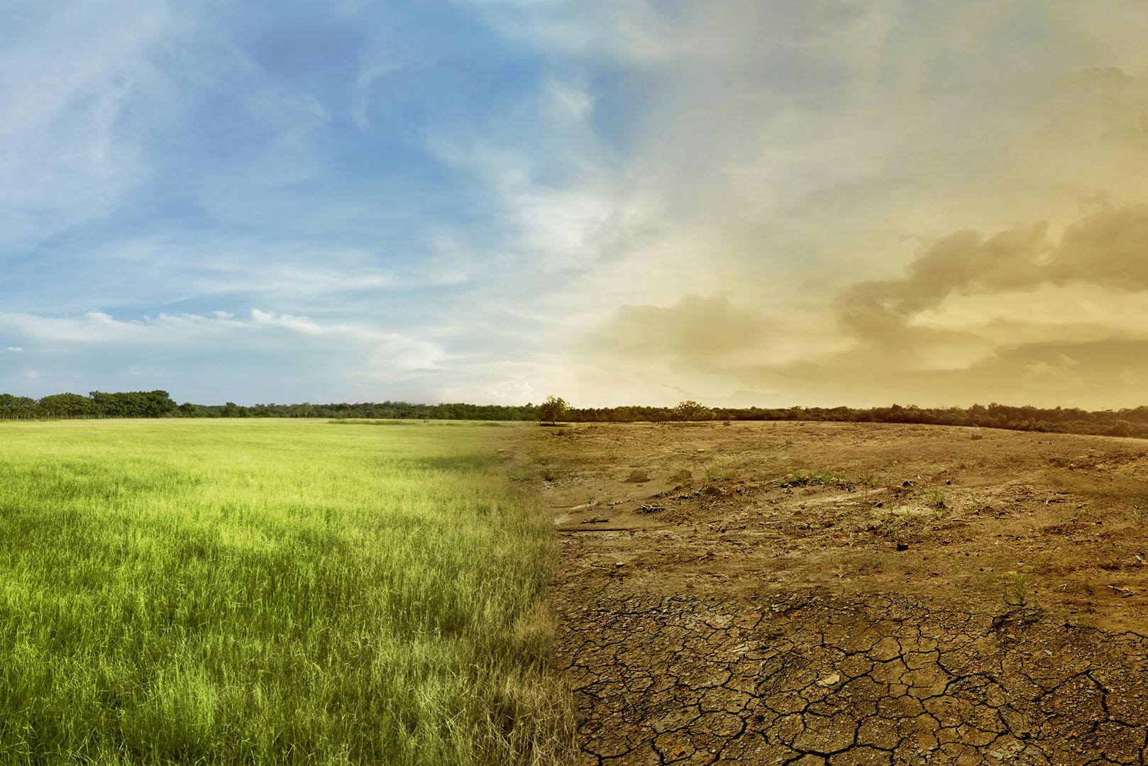 Cel mai mare sondaj de opinie privind încălzirea globală: Majoritatea oamenilor cred că ne aflăm în stare de urgență climatică