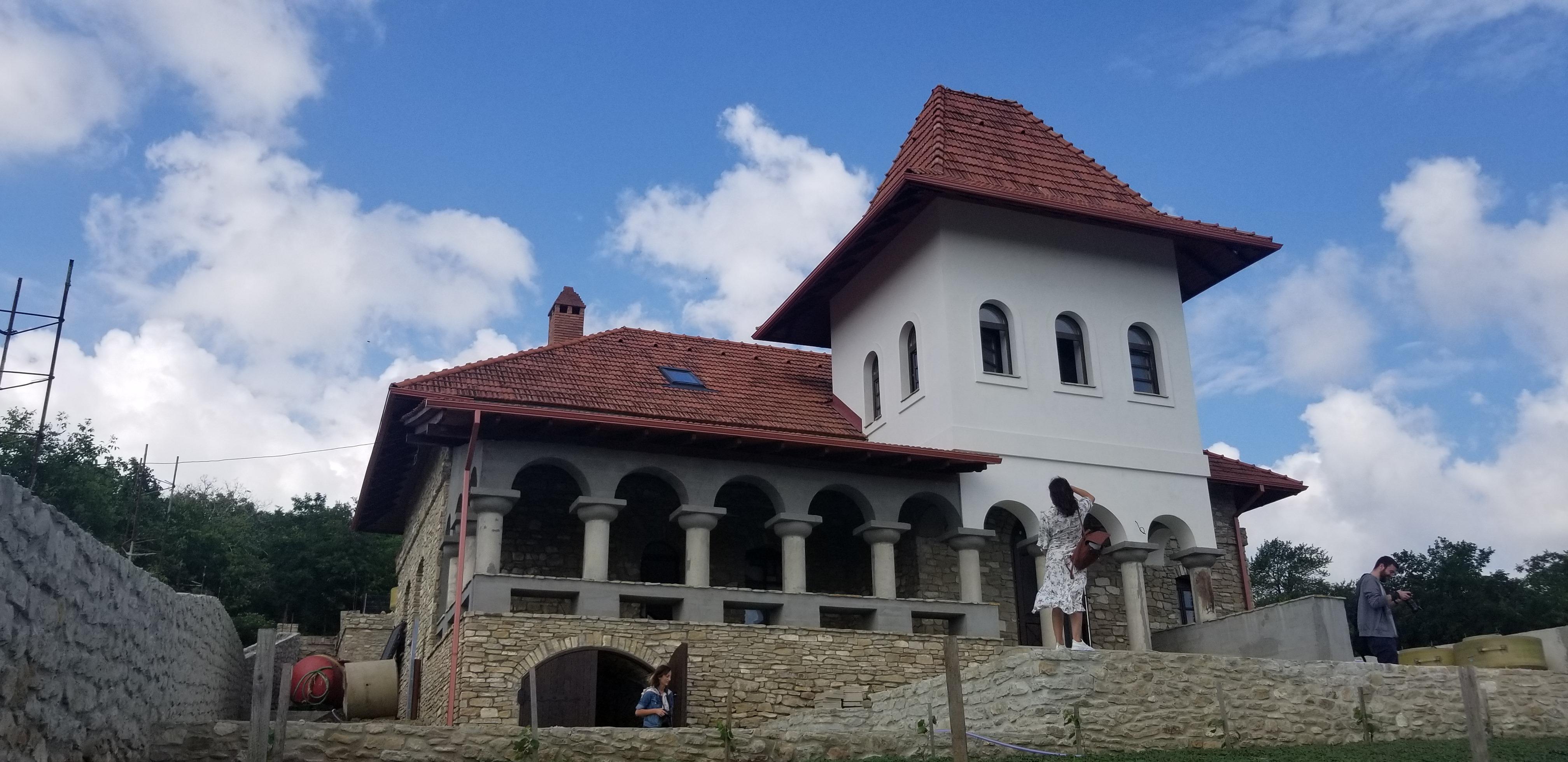 Crama de la Mirceşti a fost deschisă în vechiul conac boieresc Foto: Lucia Tăut