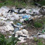 Marea Curățenie la Chișinău. Orășenii sunt invitați sâmbătă la o campanie de salubrizare