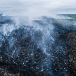 Pădurile din Siberia sunt în flăcări. Incendiile pot accelera încălzirea globală