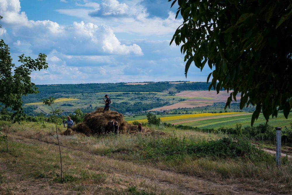 Cum Moldova atrage turiştii cu vin şi natură