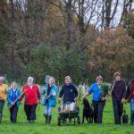 Sute de mii de britanici vor planta aproape un milion de copaci