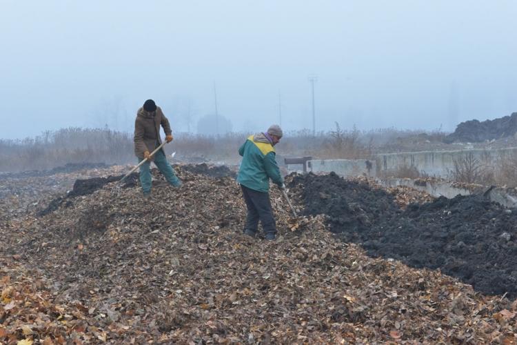 /FOTO/ Frunzele și alte deșeuri vegetale din Capitală vor fi compostate. Prima platformă autorizată, funcțională