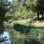 Ministerul Agriculturii anunță că a inițiat procesul de modificare a Legii apelor