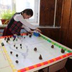 /FOTO/ Matematica şi educaţia ecologică. Cum cele două materii au fost combinate la gimnaziul din satul Piatra