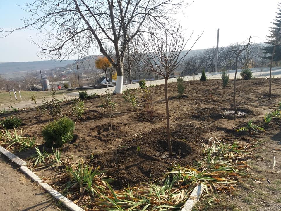 Activitate de inverzire a parcului din curtea Gimnaziului Mascauti (3)