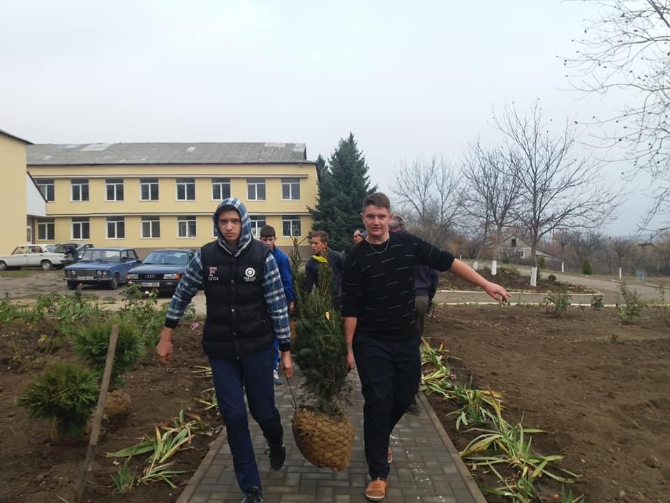 Activitate de inverzire a parcului din curtea Gimnaziului Mascauti