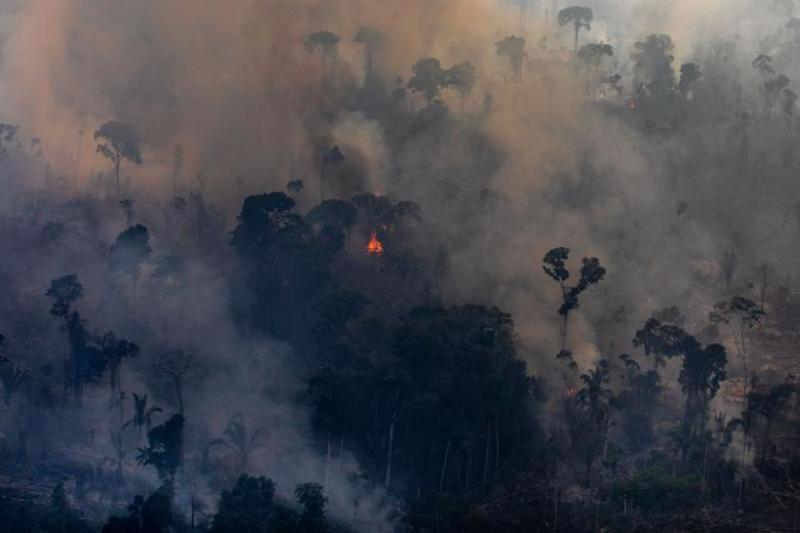 Incendii Amazon, 2019. Foto: Guliver/Getty Images