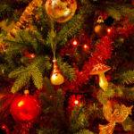 Zece sfaturi cum să petreci sărbătorile de iarnă mai ecologic