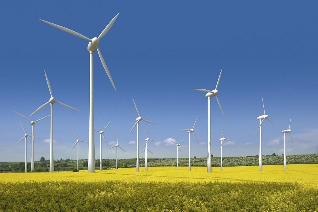 Electricitatea din surse regenerabile produsă în UE anul trecut a devansat-o pe cea din combustibili fosili