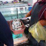 FOTO/ Specie de pești protejată de Cartea Roșie, comercializată în Piața Centrală