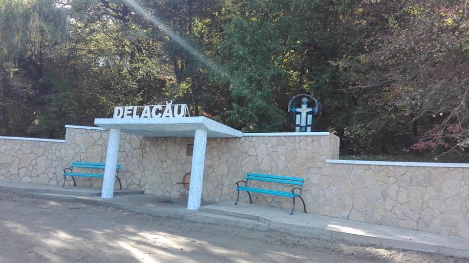 """""""Sădim păduri, NU săpăm cariere"""". Locuitorii din Delacău anunță organizarea unui marș de protest"""