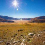 Anul 2019, al doilea cel mai călduros din istoria înregistrărilor meteorologice