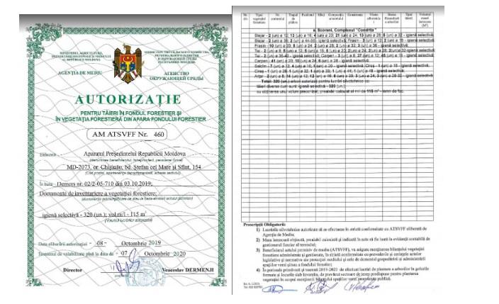Autorizaţie de tăieri de arbori la reşedinţa preşedintelui Igor Dodon. Sursa: natura.md
