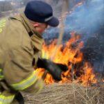 60 de focare de vegetație, lichidate de pompieri în ultimele 24 de ore